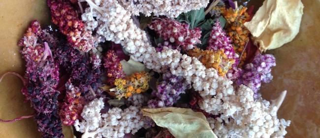 Day 17 – Quinoa or quinua?