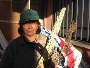 Agronomist, Maria Cayoja of INIAF, shows 2 different varieties of quinoa coming from the mid-altiplano region of Bolivia.