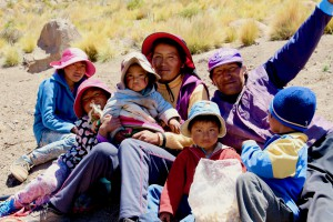 quinoa family
